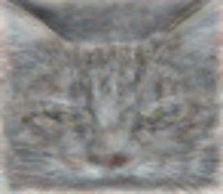 Machine Drawn Image of Cat
