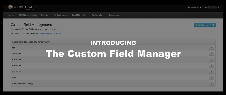 custom field manager